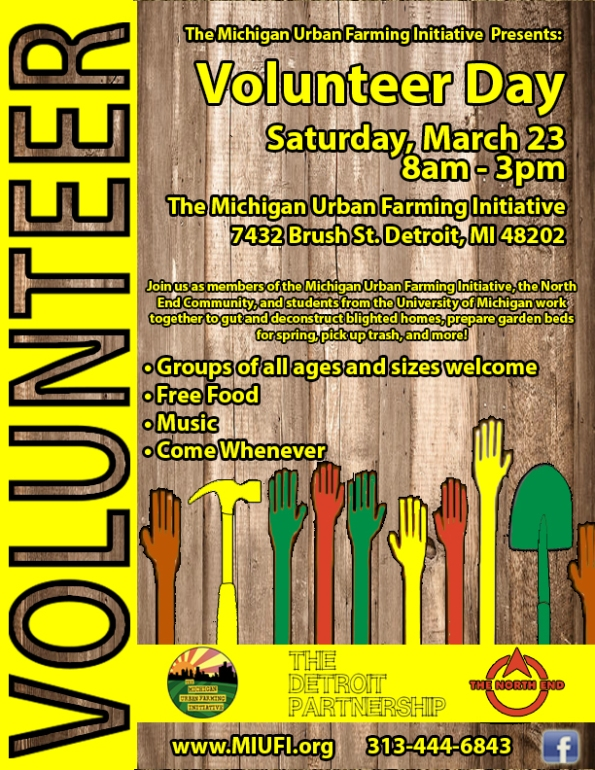 DP Volunteer Day Flyer